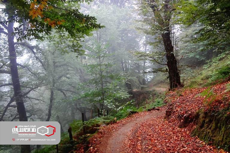 آبشار زمرد حویق در تالش نگینی در دل جنگل های استان گیلان
