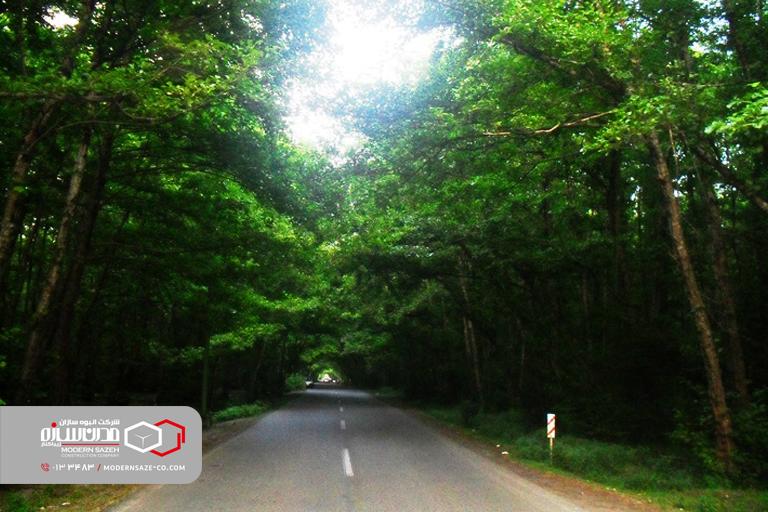 پارک جنگلی گیسوم مسیر بهشتی منتهی به دریا